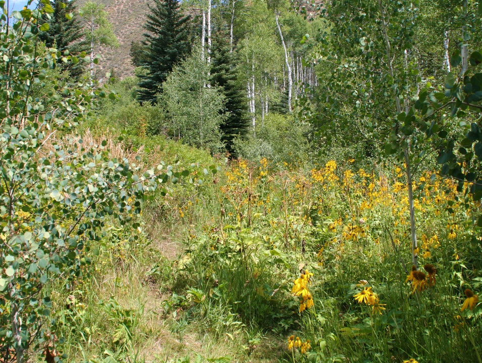 Vail Valley's Best Hiking Beaver Creek Colorado United States