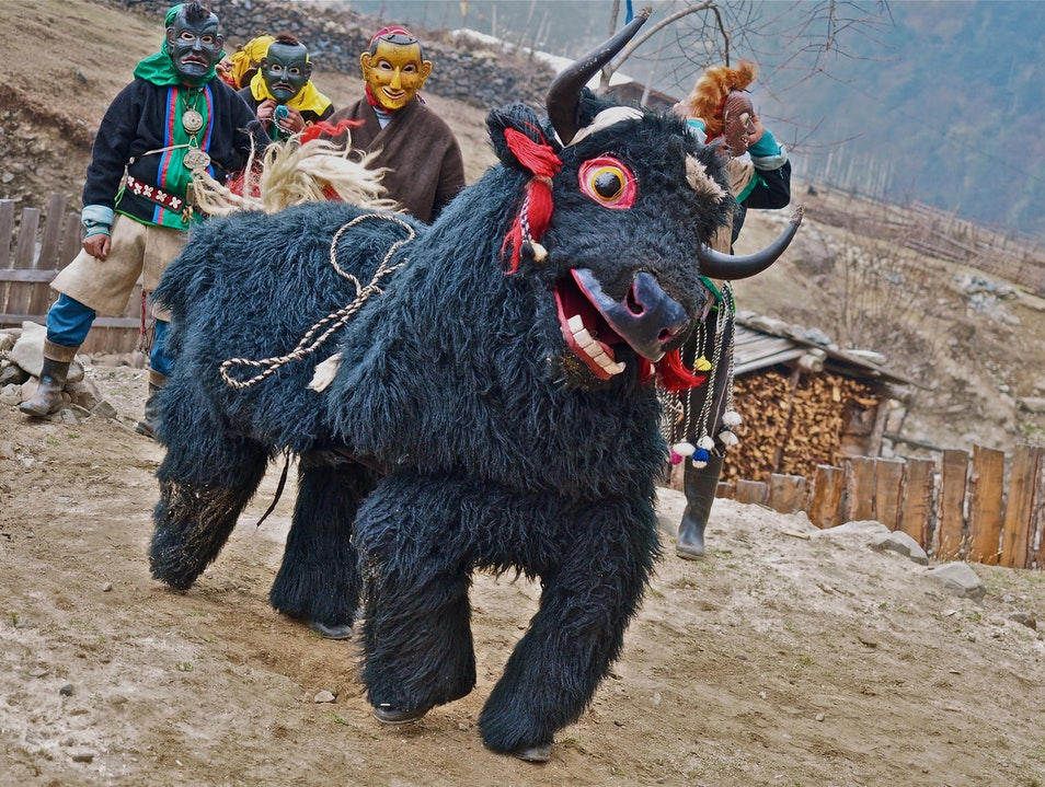Yak Dancing with Nomads Trashigang  India