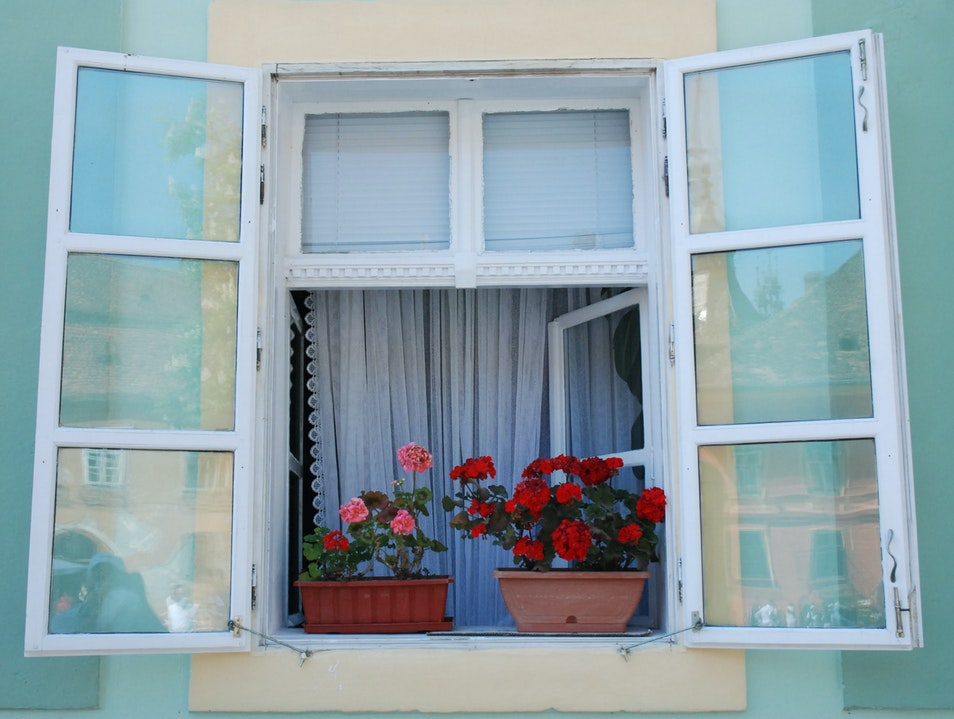 Window on the Square