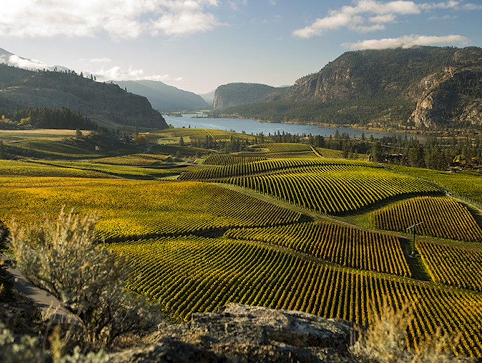 Okanagan Valley Wine Region Summerland  Canada
