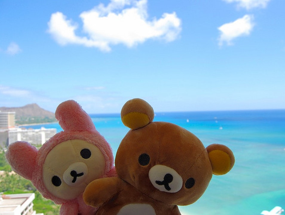 Kawaii in Hawaii Honolulu Hawaii United States