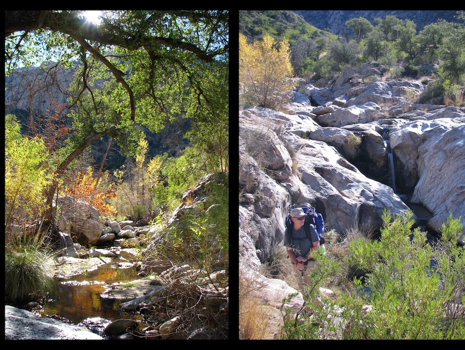 Cool Canyon Pools--hike into the desert mountains near Tucson Mount Lemmon Arizona United States