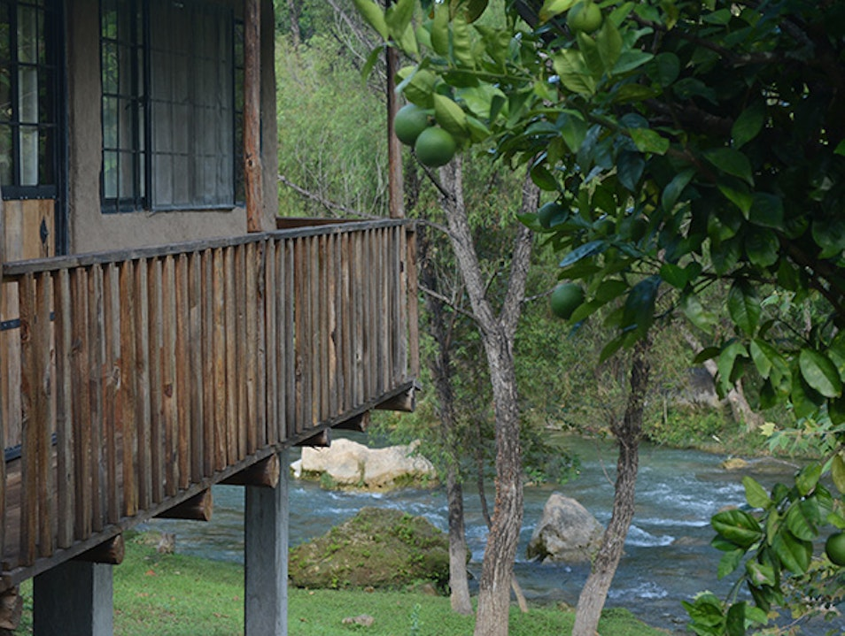 Ecocabins near the river
