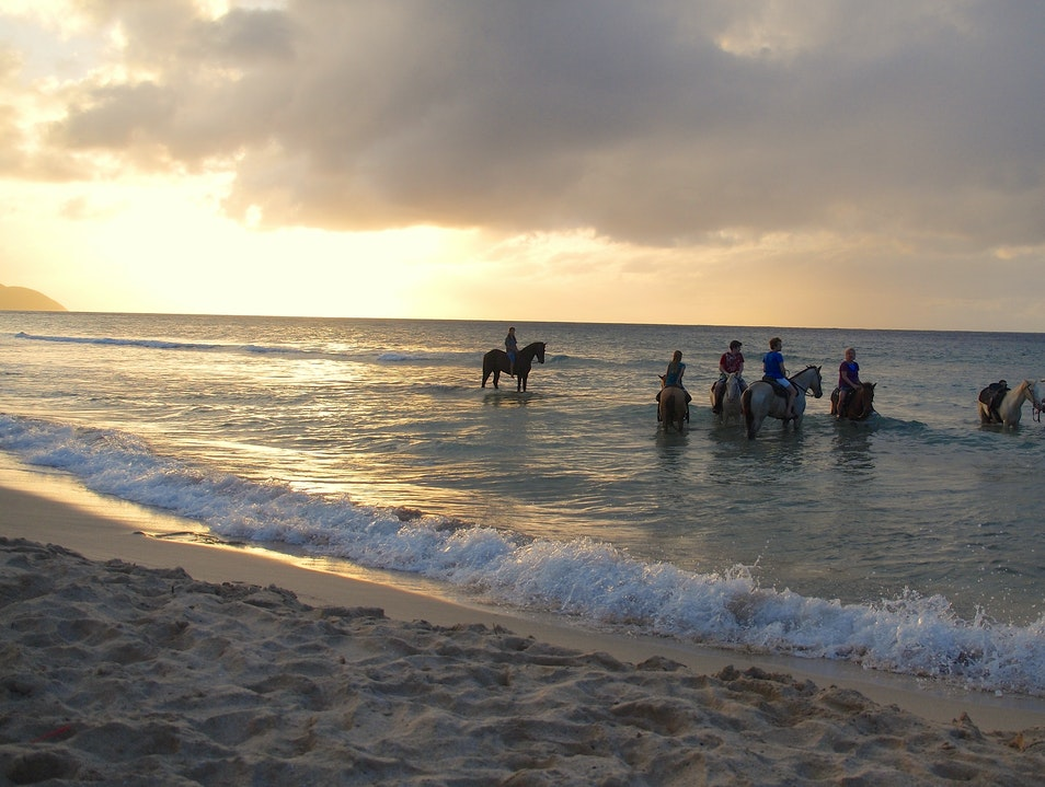 Horseback Riding into the Sea with Cowboy Steve Frederiksted  United States Virgin Islands