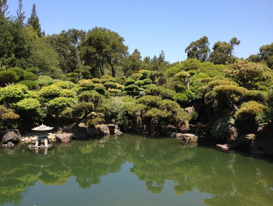 Japanese garden Hayward California United States