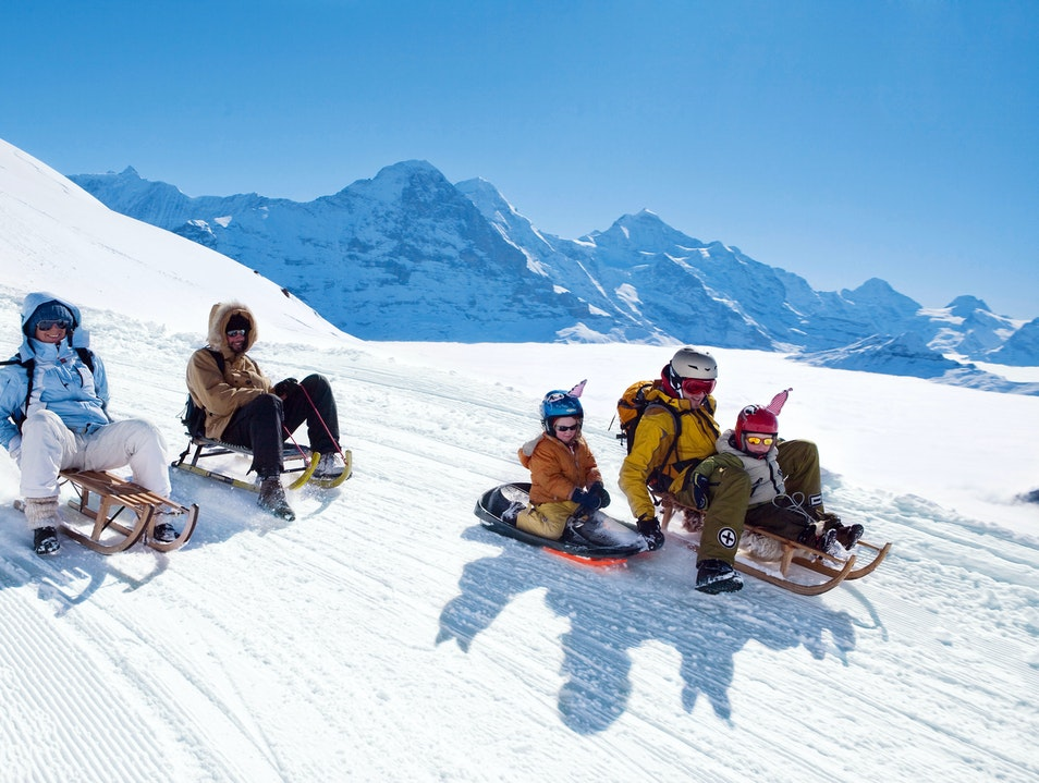 Hurtle Down the Longest Sled Run in Europe Grindelwald  Switzerland