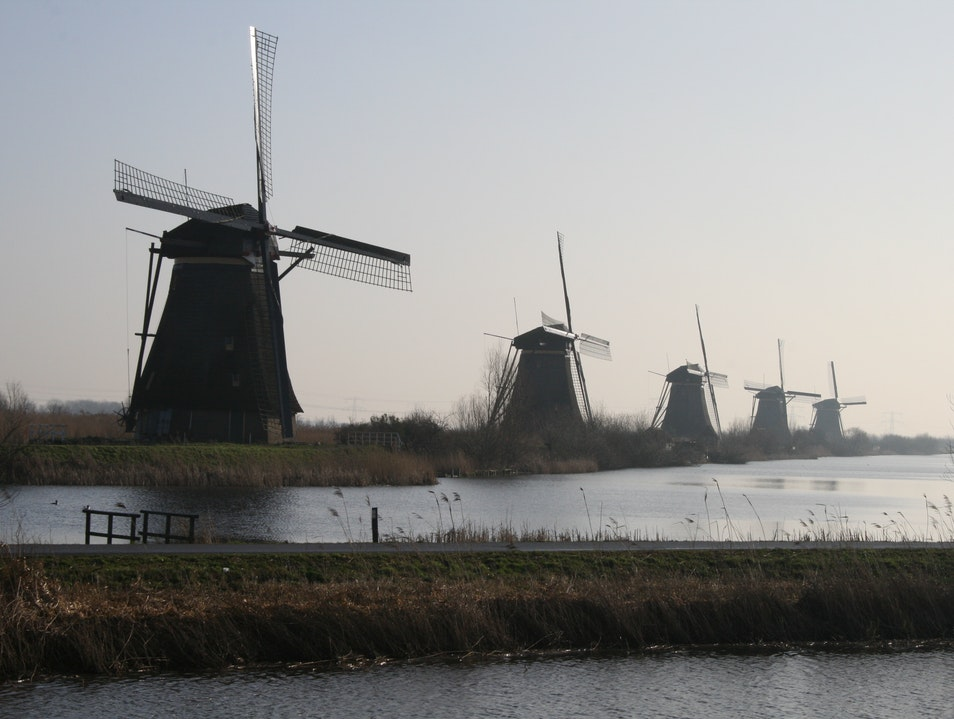 Kinderdijk: Windmills in their Natural Habitat Alblasserdam  The Netherlands