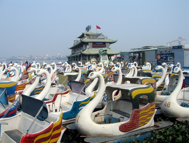 Make Like a Lovebird in a Swan Boat