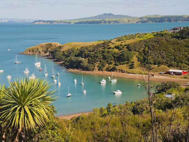 Navigating Auckland's Westerlies