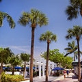 Lincoln Road Mall Miami Beach Florida United States