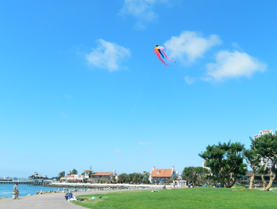 Let's fly a kite! San Diego California United States