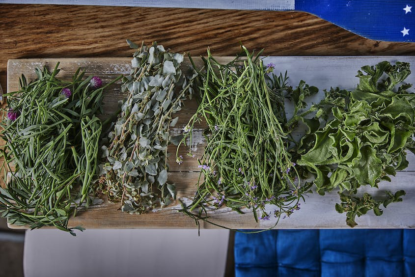 Forager Yatir Sade collects eight different plants for chef Amos Sion, but says there are over 100 edible herbs along Israel's shores.