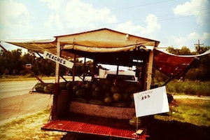 Traveling Fruit Stand