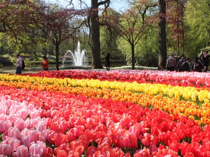 Keukenof Gardens Lisse  The Netherlands