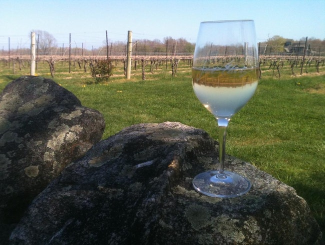 Rock Wall Vineyard