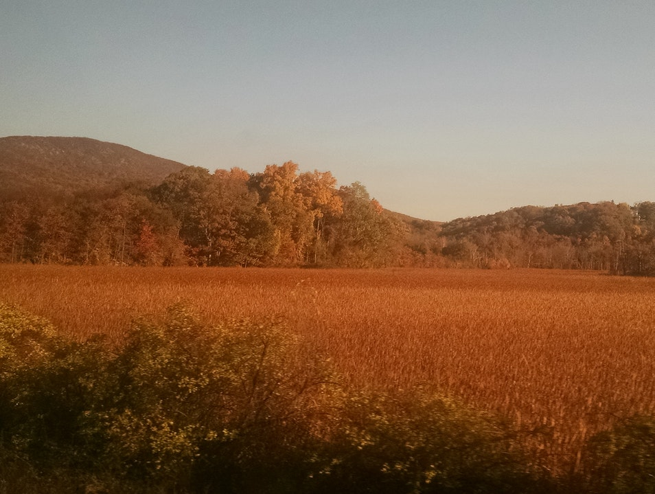 View from Amtrak train- NYC to Montreal 3