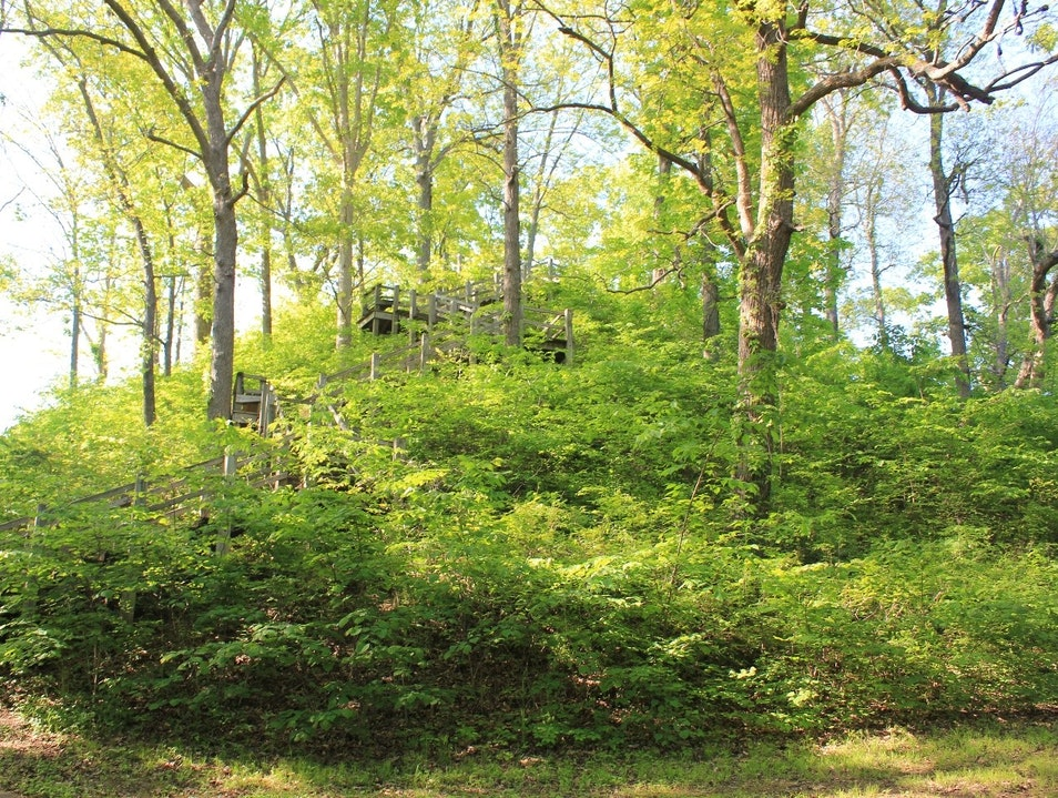 North America's Largest Middle Woodlands Mound Pinson Tennessee United States