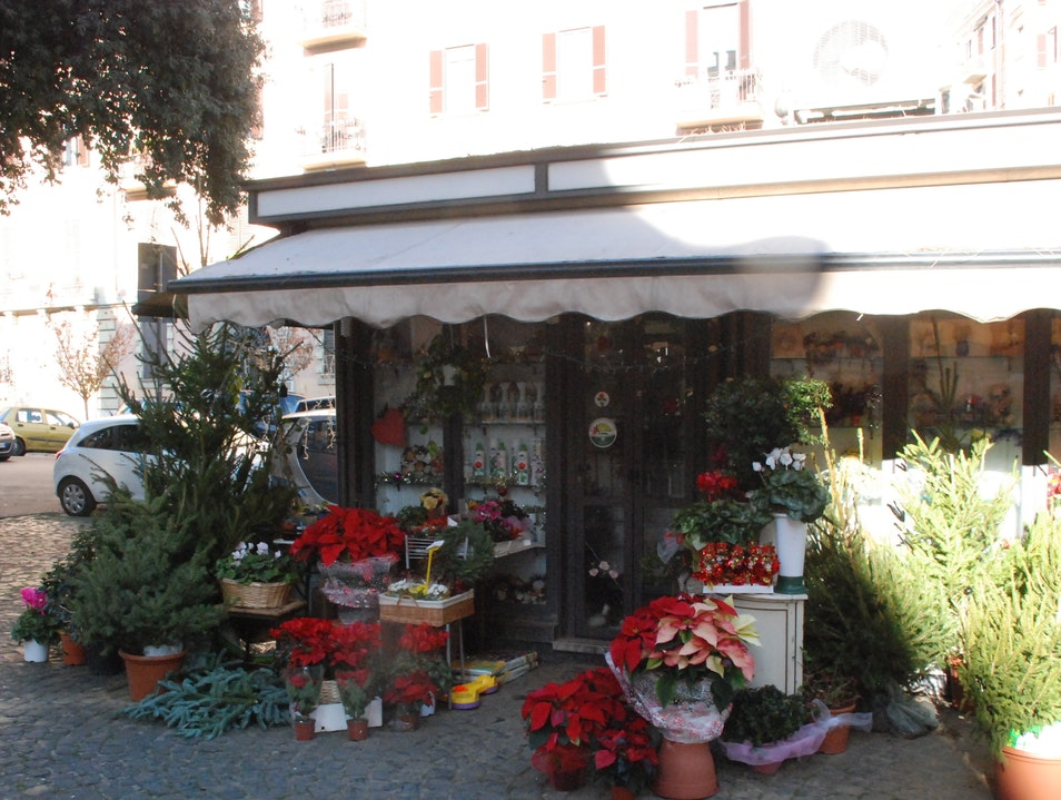 The best locations for purchasing flowers when staying near St. Peter's  Rome  Italy
