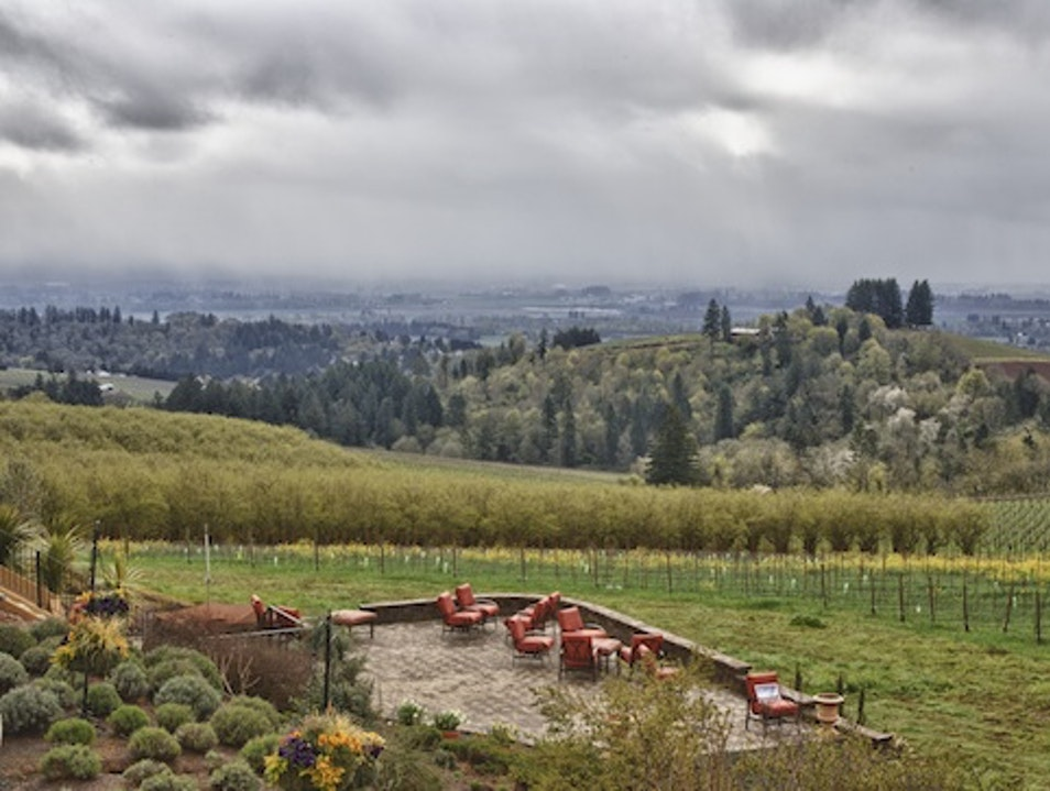 Vineyard Hotels: Black Walnut Inn, Oregon Dundee Oregon United States