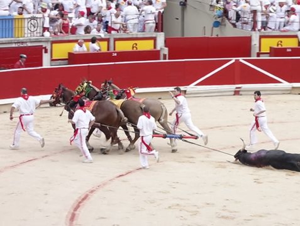 Bloody Photos Not For The Faint Of Heart Pamplona  Spain