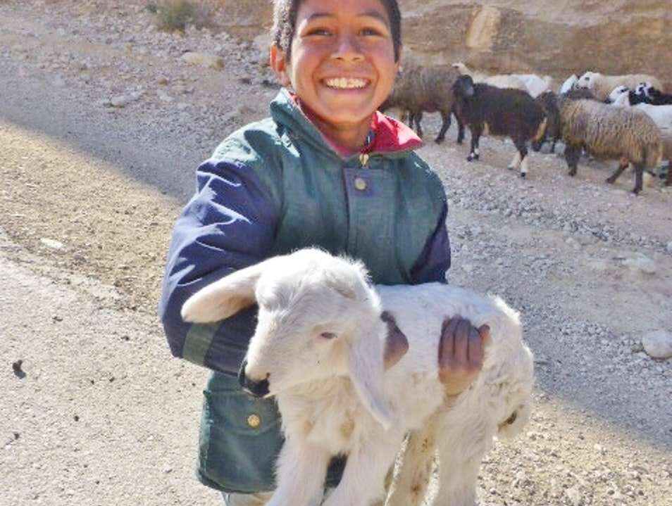Little shepard shares his baby lamb.... Maan  Jordan
