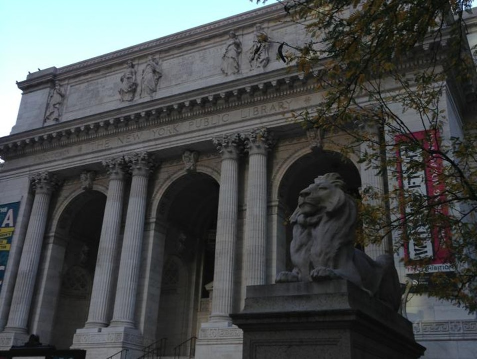 New York's Iconic Library New York New York United States