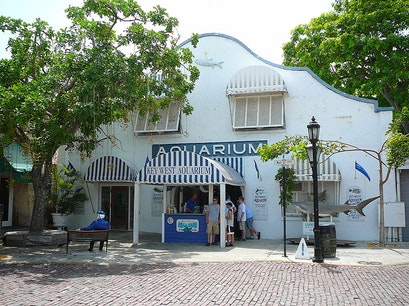 Key West Aquarium Key West Florida United States