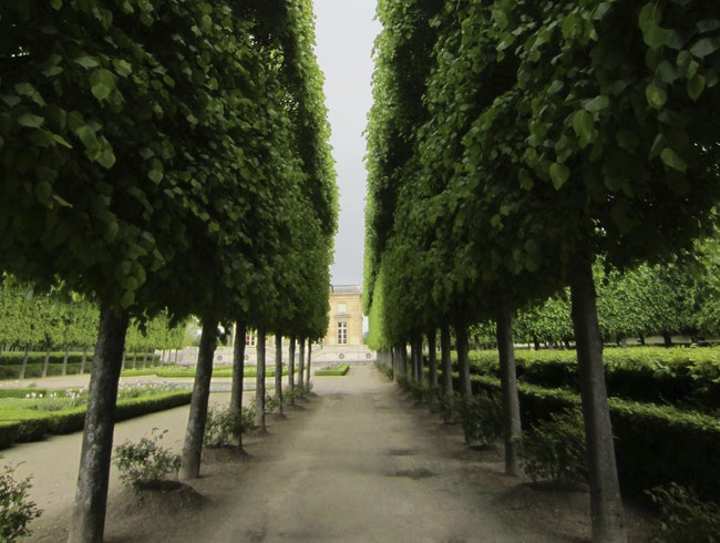 Wandering around the gardens at Versailles