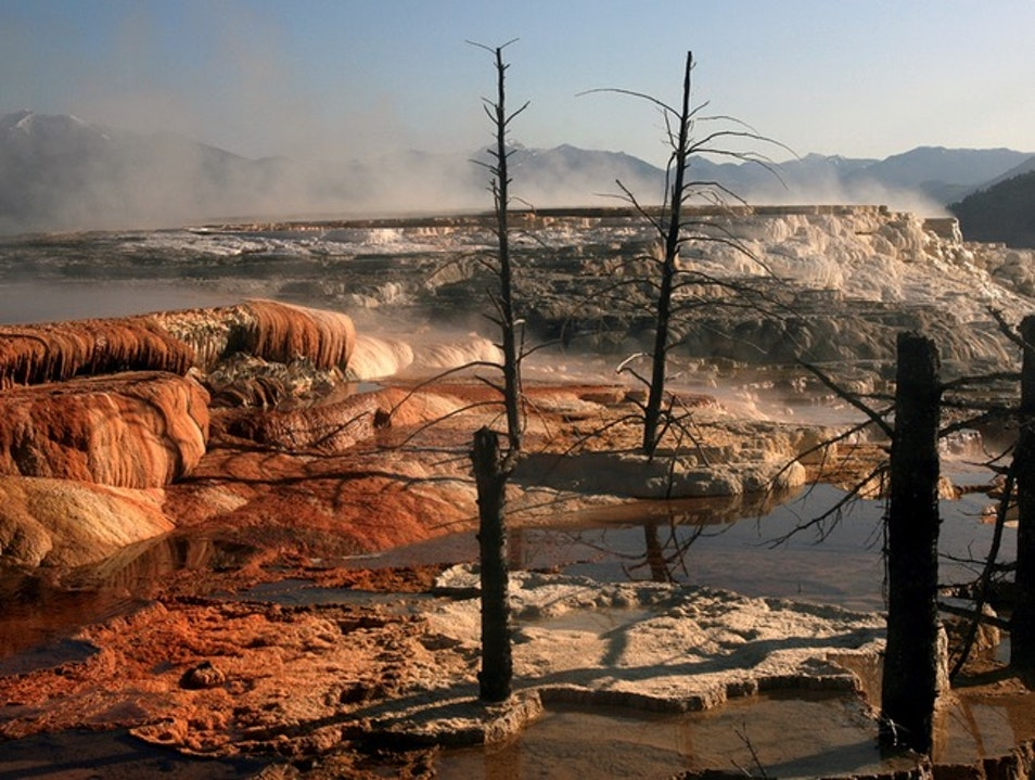 Mammoth Hot Springs Yellowstone National Park Wyoming United States
