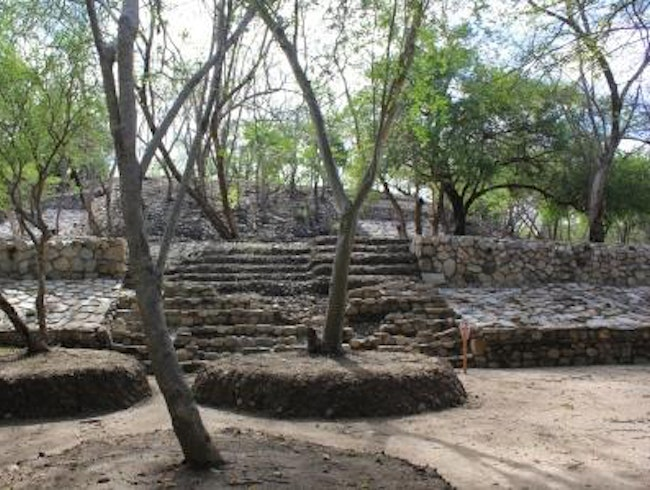 Ecology vs. Archaeology at Copalita, Oaxaca