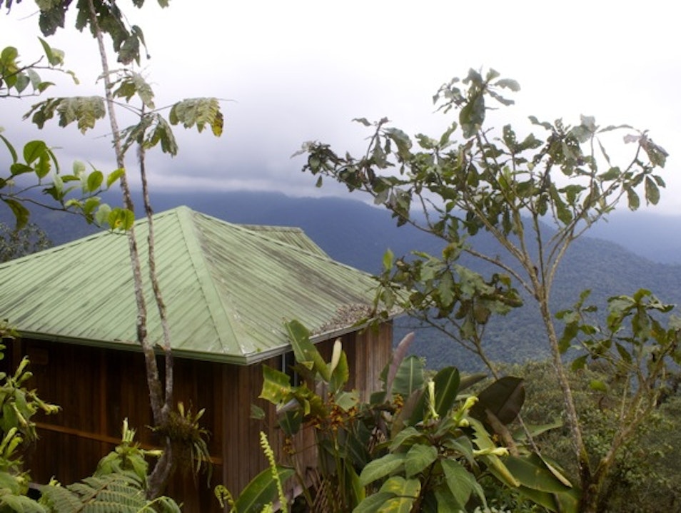 Cabin in the Clouds Guayas  Ecuador