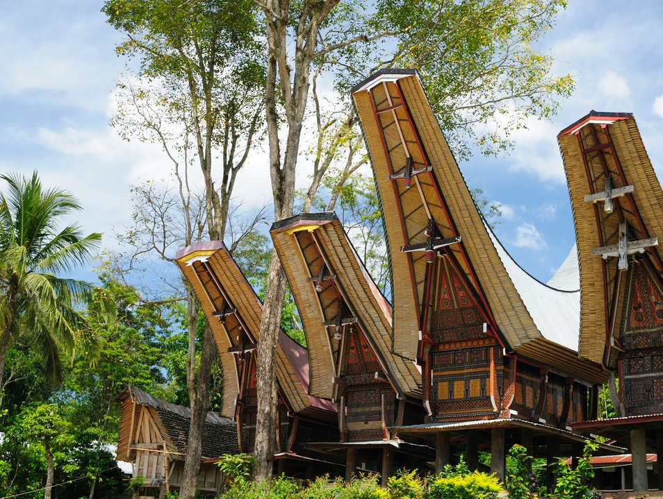 The Tongkonan of the Toraja Halong  Indonesia