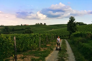 The hills of Southern Piemonte