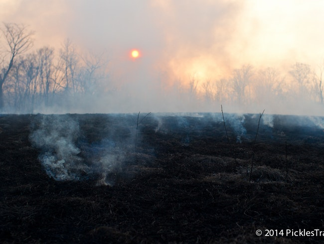 Controlled Prairie Fire