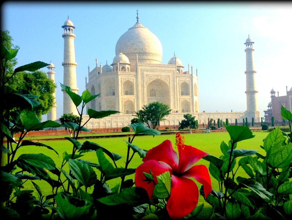 Mankind's Finest Architectural Achievement Agra  India