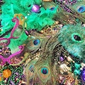 Mardi Gras Zone New Orleans Louisiana United States