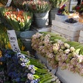 Columbia Road Flower Market London  United Kingdom