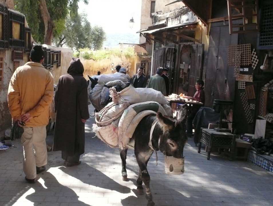 The main transportation in the medina.