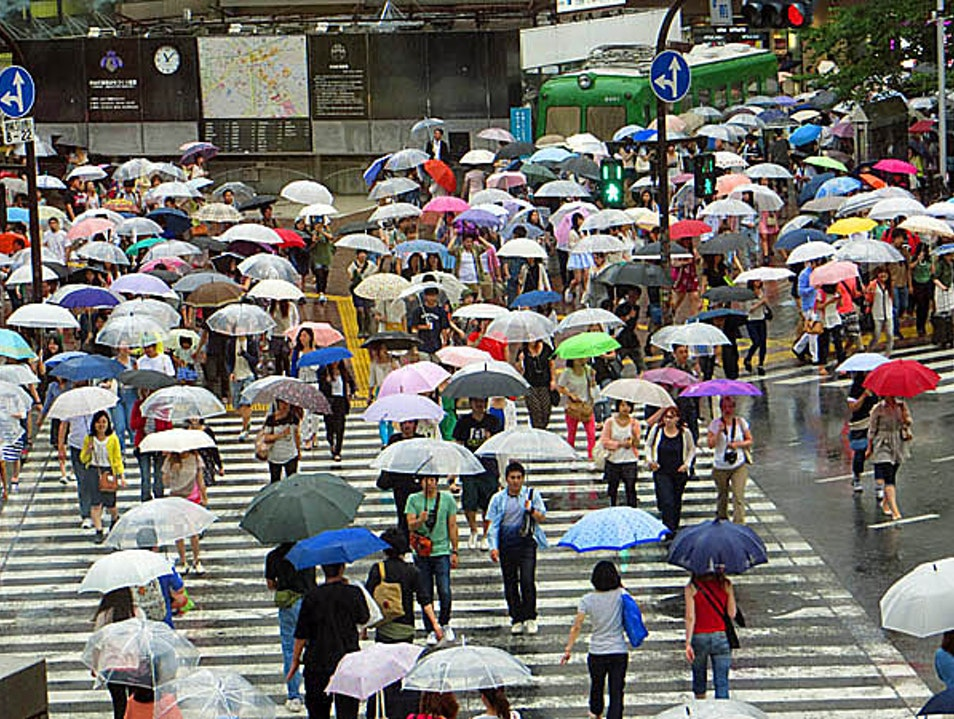See the Shibuya Crossing from Above Tokyo  Japan