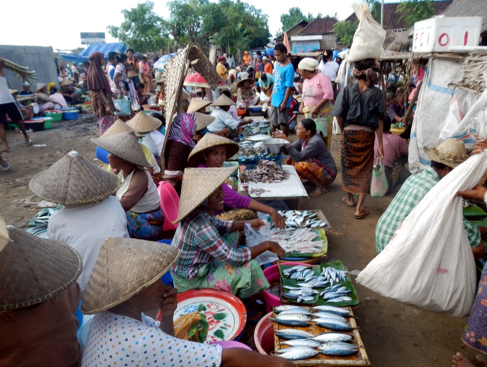 The Fish Mongers of Lombok Central Borneo  Indonesia
