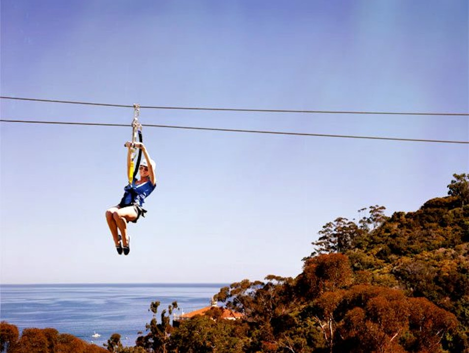 Zip Line Eco Tour at Catalina Island Avalon California United States