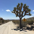 Joshua Tree National Park Riverside County California United States