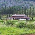 Stables at Koele  Lanai City Hawaii United States
