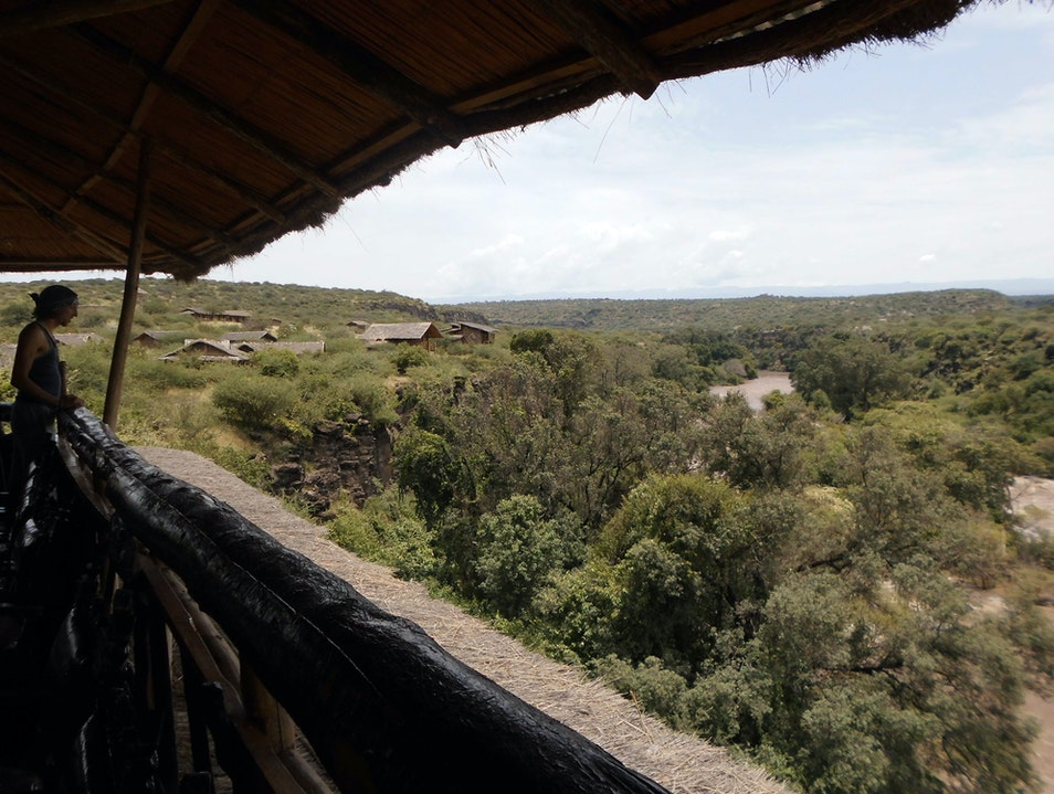 Finding peace in nature in central Ethiopia Awash National Park  Ethiopia
