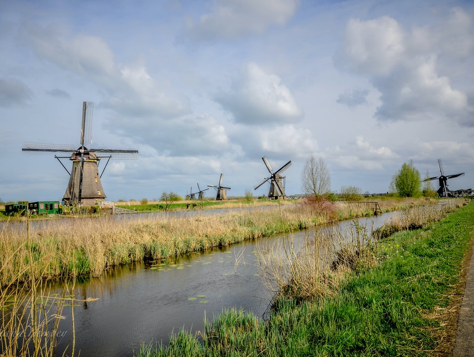 In the company of old windmils  Kinderdijk  The Netherlands