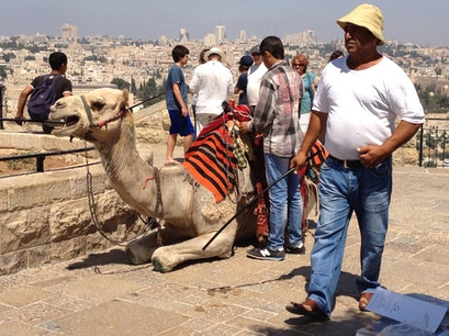 Mount Of Olives Jerusalem  Israel