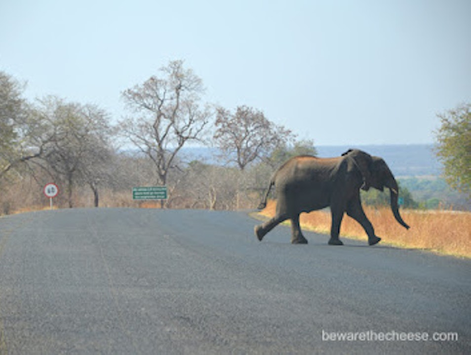 Southern Africa Travel Tips - Driving Around Ghanzi  Botswana