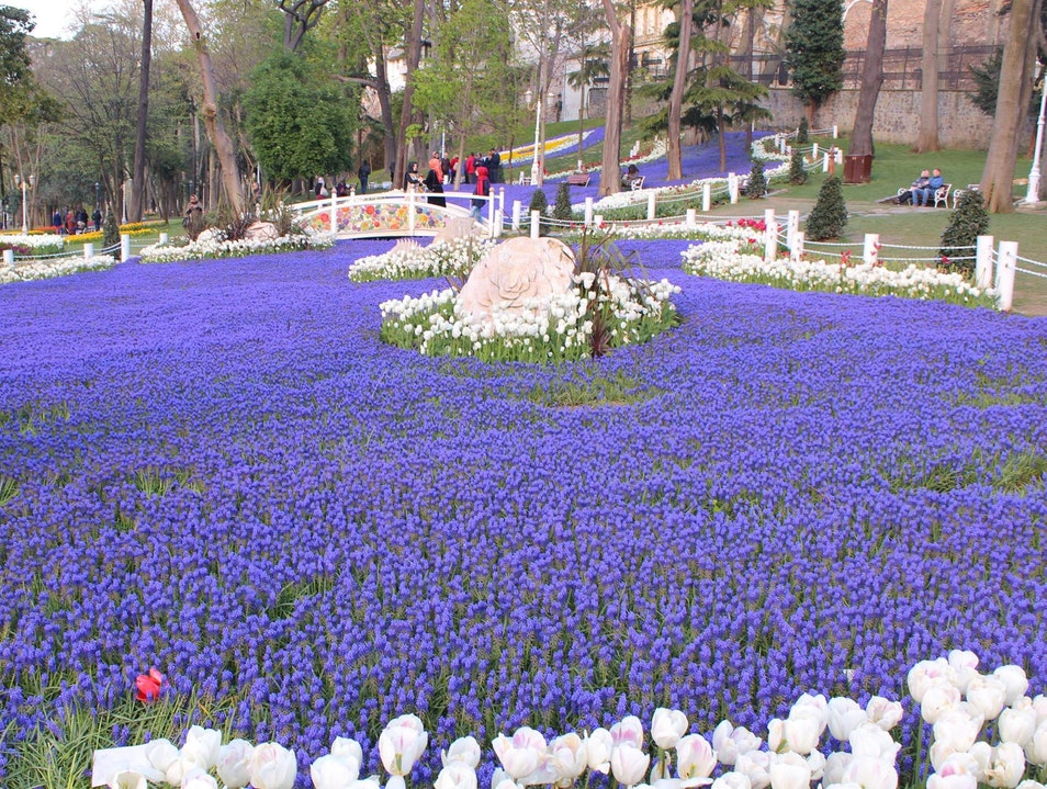 Gulhane Park in the time of tulips