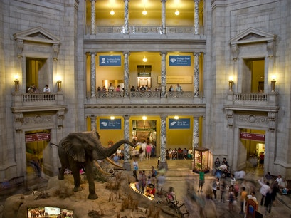 Smithsonian Museum of Natural History Washington, D.C. District of Columbia United States