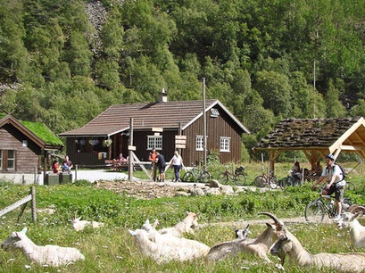 Rallarrosa Farm  Aurland  Norway